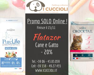 Flatazor Cane e Gatto